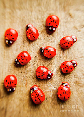 Wooden Ladybugs Poster