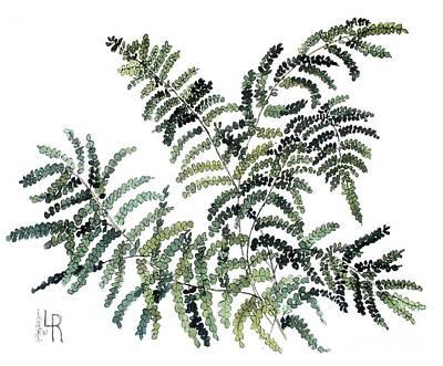 Woodland Maiden Fern Poster