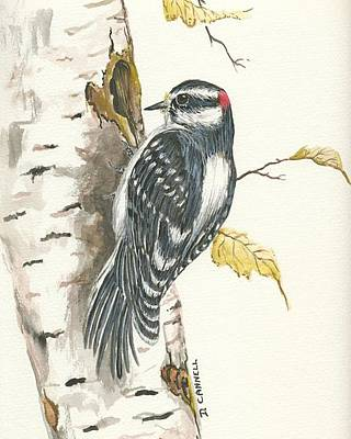 Poster featuring the painting Woodpecker by Darren Cannell