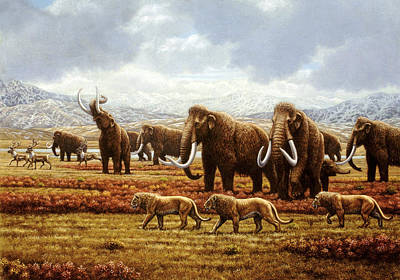 Woolly Mammoths Poster by Mauricio Anton