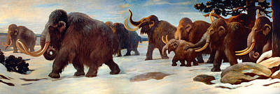 Wooly Mammoths Near The Somme River Poster by Mountain Dreams