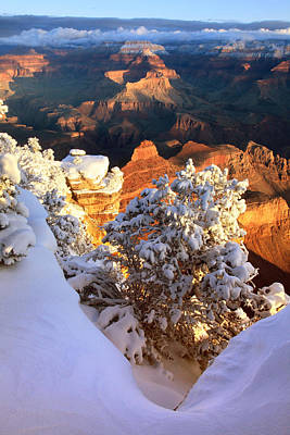 Yaki Point Snowscape Poster by Mike Buchheit