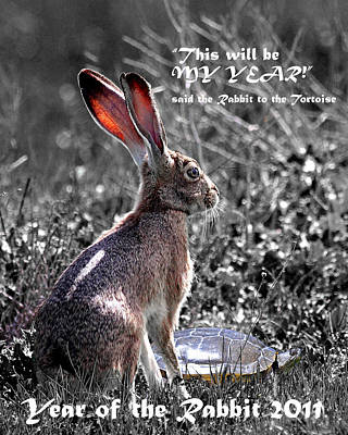 Year Of The Rabbit 2011 . Vertical Bw Poster by Wingsdomain Art and Photography
