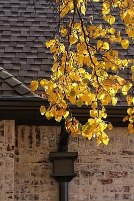 Yellow Branch Poster by Buck Buchanan