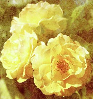 Yellow Bunch Vintage Poster by Cathie Tyler