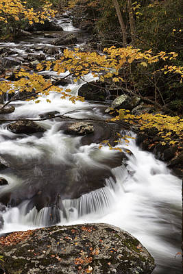 Yellow Contrast Poster by Jon Glaser