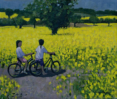 Yellow Field Poster by Andrew Macara
