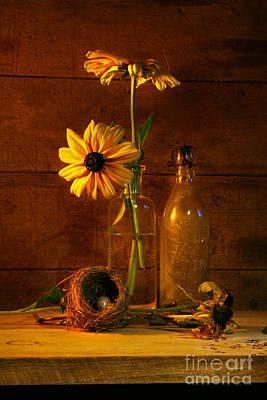 Yellow Flower Still Life Poster by Sandra Cunningham