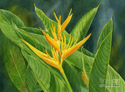Yellow Heliconia Paradise With Leaves Poster
