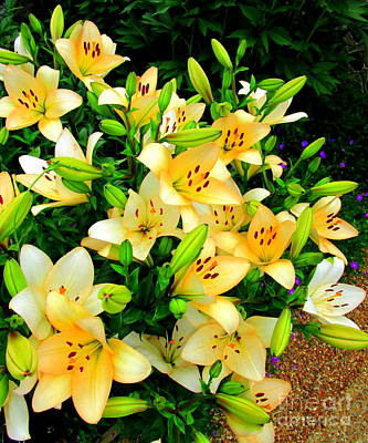 Poster featuring the photograph Yellow Lilies 2 by Randall Weidner