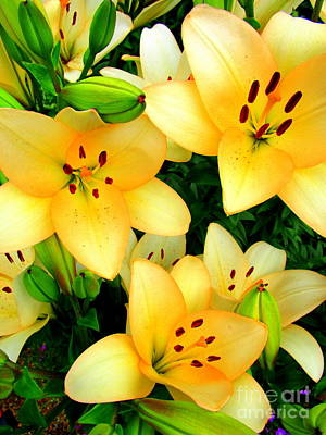 Poster featuring the photograph Yellow Lilies 3 by Randall Weidner
