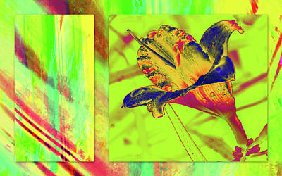 Poster featuring the photograph Yellow Lilly Color Palette by Irma BACKELANT GALLERIES
