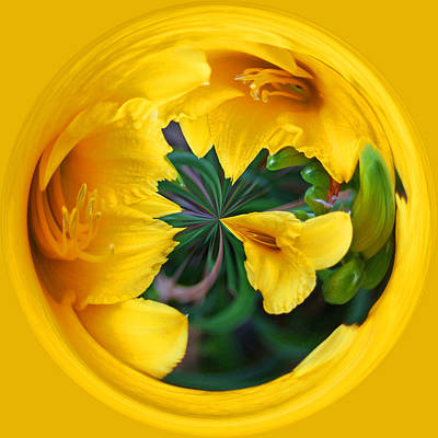 Poster featuring the photograph Yellow Lily Orb by Bill Barber