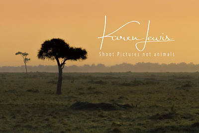 Poster featuring the photograph Yellow Mara Dawn by Karen Lewis