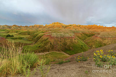 Yellow Mounds Morning Poster