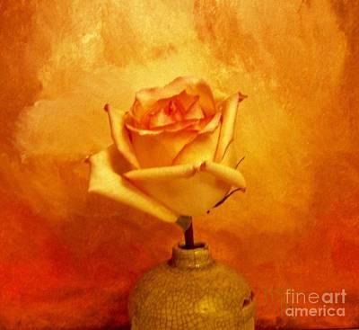 Yellow Red Orange Tipped Rose Poster by Marsha Heiken