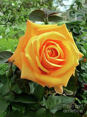 Yellow Rose 04 ... 03.39 Rose Rose Image Poster