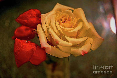Poster featuring the photograph Yellow Rose And Chinese Lanterns by Diana Mary Sharpton