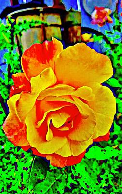 Yellow Rose Poster by Cadence Spalding