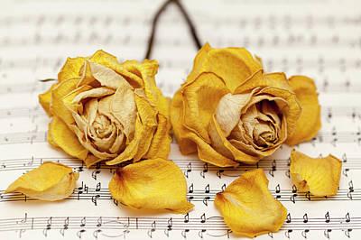 Yellow Rose Duet Poster