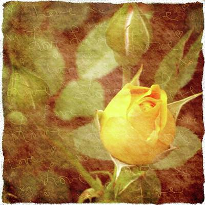 Yellow Rose Of Love Poster by Cathie Tyler