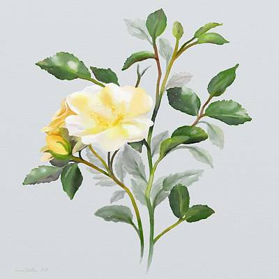Poster featuring the painting Yellow Watercolor Rose by Ivana Westin