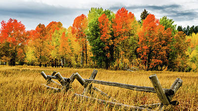 Yellowstone Autumn Poster