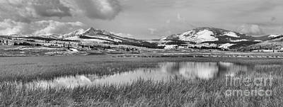 Yellowstone Swan Lake Panoramic Reflections Black And White Poster by Adam Jewell