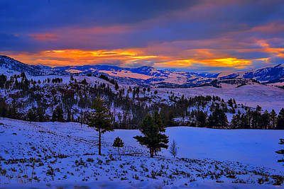 Yellowstone Winter Morning Poster