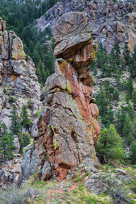 Poster featuring the photograph Yogi Bear Rock Formation by James BO Insogna