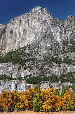 Yosemite Autumn Poster