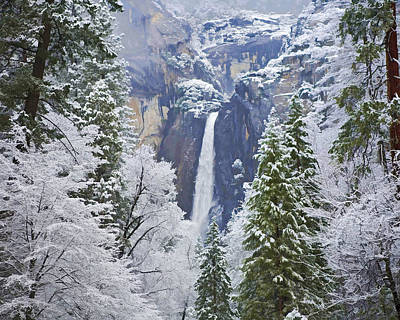 Yosemite Falls In The Snow Poster