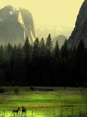 Yosemite Valley Golden . Vertical Poster by Wingsdomain Art and Photography