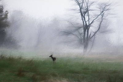 Young Deer And Tree Poster