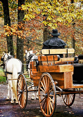 Your Carriage Awaits Poster by TnBackroadsPhotos