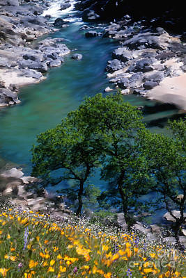 Yuba River In Spring Poster
