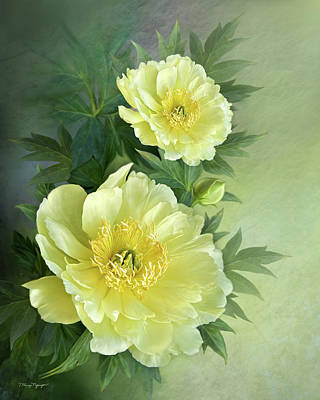 Poster featuring the digital art Yumi Itoh Peony by Thanh Thuy Nguyen