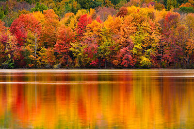 Yummy Autumn Colors Poster