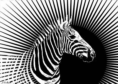 Zebra Dawn Poster by Michael Durst