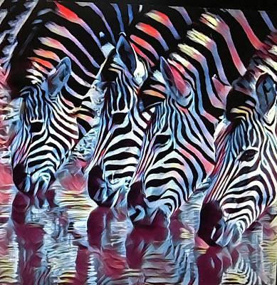 Zebra Dazzle Poster