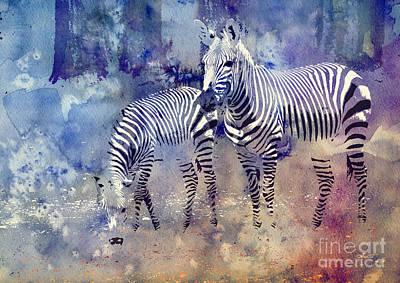 Zebra Paradise Poster