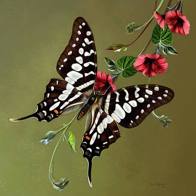 Zebra Swallowtail Butterfly Poster by Thanh Thuy Nguyen