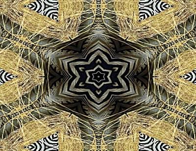 Zebra Vi Poster by Maria Watt