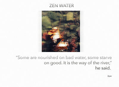 Zen Water  Poster by Steven Digman