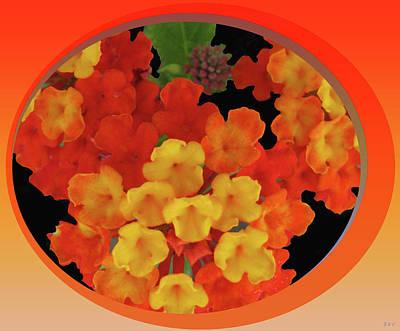 Zesty Orange Spice Poster by Debra     Vatalaro