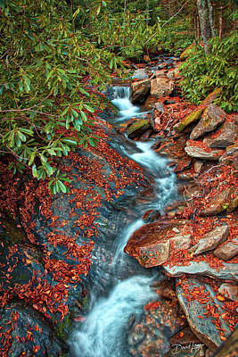Poster featuring the photograph Zig Zag Mountain Stream by David A Lane