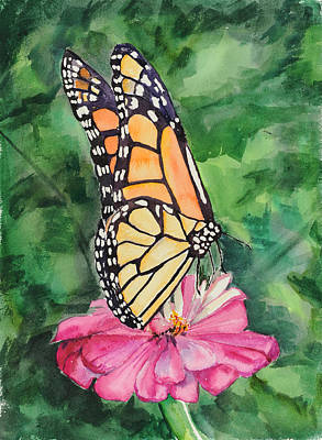 Zinnia And Monarch Poster
