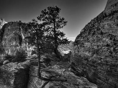 Zion - Angels Landing 001 Bw Poster by Lance Vaughn