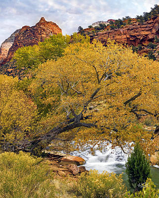 Zion Canyon Autumn Poster by Leland D Howard