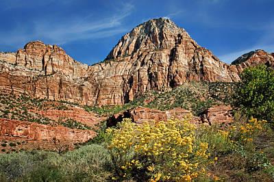 Zion Canyon - Navajo Sandstone Poster by Nikolyn McDonald